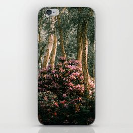 Spring at Holme Fen iPhone Skin