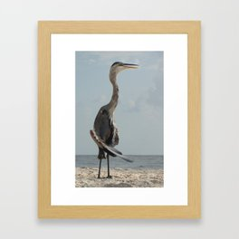 Water Bird Framed Art Print