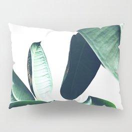Ficus Elastica #26 #foliage #decor #art #society6 Pillow Sham