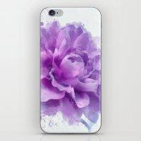 dahlia iPhone & iPod Skins featuring Dahlia by Ciro Design