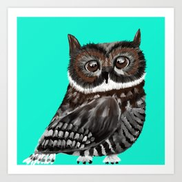 Big Eyed Owl With Aqua Background Art Print