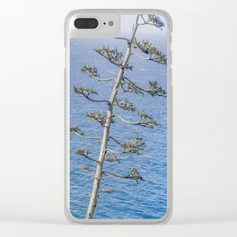 """""""Agave and Pacific"""" by Murray Bolesta! Clear iPhone Case"""