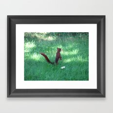 A friend in my garden Framed Art Print