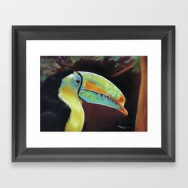 Toco Toucan (Ramphastos Toco) Pastels Artwork Framed Art Print