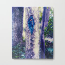 Forest Gnome Home Metal Print
