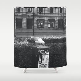 Seagull of Helsinki Shower Curtain