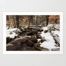 stream through snowy woods Art Print