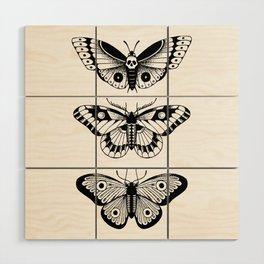 Moths Wood Wall Art