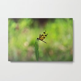 I Will Fly If You Come Around Metal Print