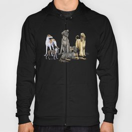 Graceful Sighthounds Hoody