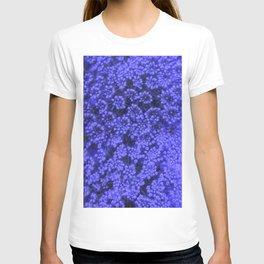 Blue Queen Anne's Lace (Up Close) T-shirt