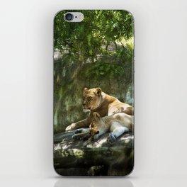 Portland Lioness iPhone Skin
