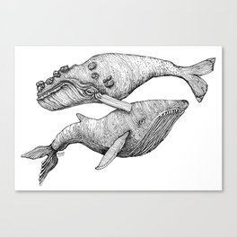 A Couple Of Whales  by Michelle Scott of dotsofpaint studios Canvas Print