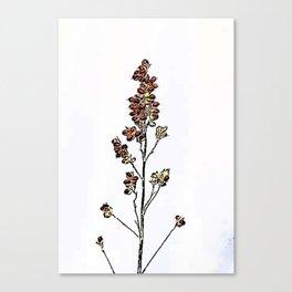 Simple Plant Canvas Print