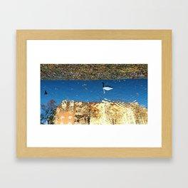 Reflector Swan I - Inverse Framed Art Print