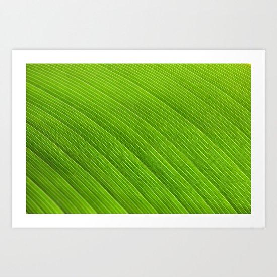 Green 8869 Art Print