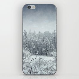 winterscape iPhone Skin