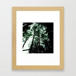 dreaming of tree tops Framed Art Print