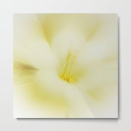 Radial freesia Metal Print
