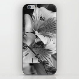 Freesia B&W iPhone Skin