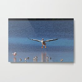 Flickering Flight Metal Print