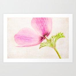 Linen In Pink Art Print