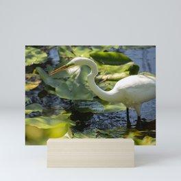 White Egret, Green Eyes  Mini Art Print