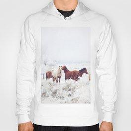 Winter Horseland Hoody
