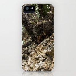 Roots and Stones iPhone Case