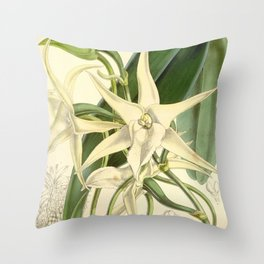 Angraecum sesquipedale Throw Pillow