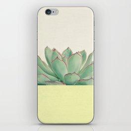 Succulent Dip II iPhone Skin