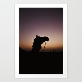 SUNSETS IN INDIA Art Print