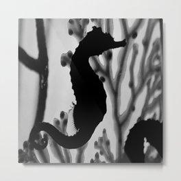 Seahorse Silhouette Metal Print