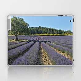 Lavender fields, Provence, France Laptop & iPad Skin
