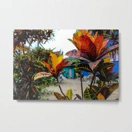 Dreamy Mexican Garden Metal Print