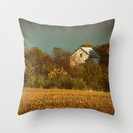 Abandoned Barn Colorized Landscape Photo Throw Pillow