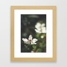 Sweet, Sweet Lies Framed Art Print