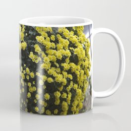 Longwood Gardens Autumn Series 222 Coffee Mug