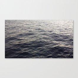 Qua Dementi Canvas Print