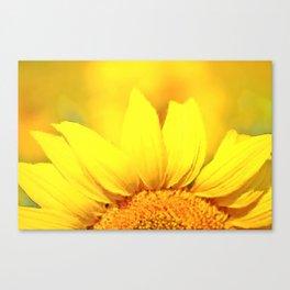 Sunflower love Flowers Flower Summer floral Canvas Print