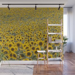 Sea of Sunflowers Wall Mural