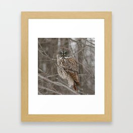 Patience is my strongest virtue Framed Art Print