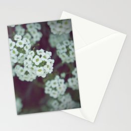 Remember Me Stationery Cards