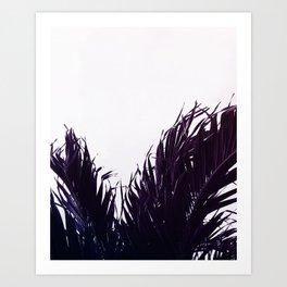 Palm fringe Art Print