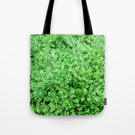 Textures in Green Tote Bag