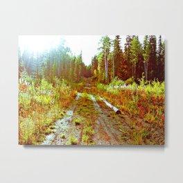 Lone Road Metal Print