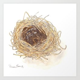 A Bird's Nest Art Print