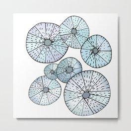 Sea Urchins Metal Print