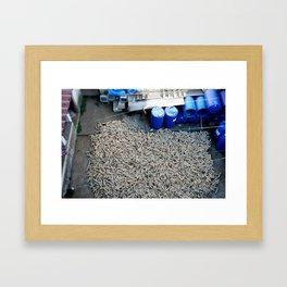harvest in san juan comalapa Framed Art Print