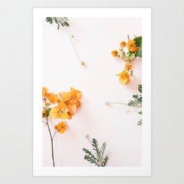 Bougainvillea Blooms Art Print
